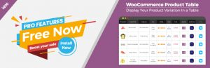 Chức năng mua hàng nhiều, mua nhanh trong woocommerce WP